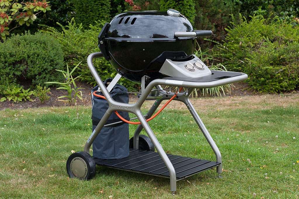 Quale barbecue a gas?