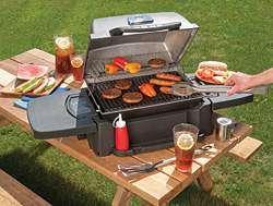 Barbecue e Pic Nic
